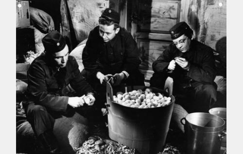 Alokkaat Leo Lindblom (Leo Jokela), Esko Sirola (Lasse Pöysti) ja Antti Ojala (Kai Lappalainen) ovat joutuneet perunateatteriin.
